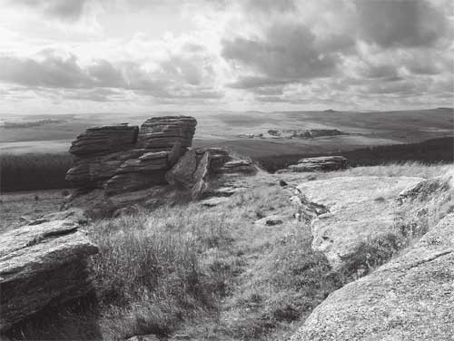Powder Mills from Bellever Tor